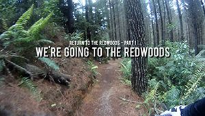 Return to the Redwoods 1 - We're going to the Redwoods