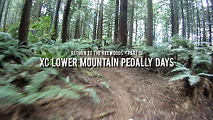 Return to the Redwoods 3 - XC Lower Mountain 	Pedally Days